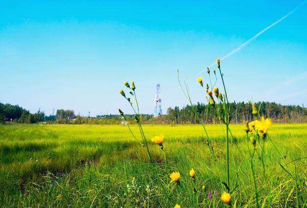 Equipamento de perfuração entre a grama e as flores do pântano. sibéria.