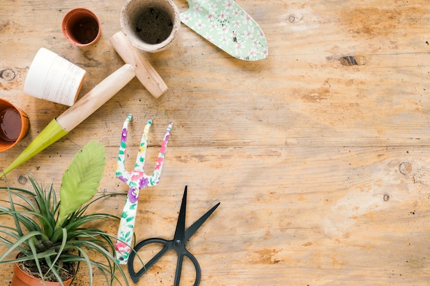 Equipamentos de jardinagem com vaso de plantas no fundo de madeira