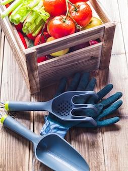 Equipamentos de jardinagem, luvas e caixa de vegetais na mesa