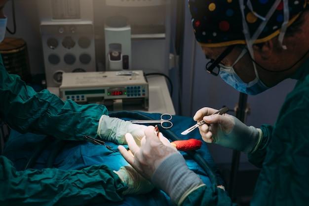 Equipe de cirurgiões atuando no hospital. conceito de cirurgia.
