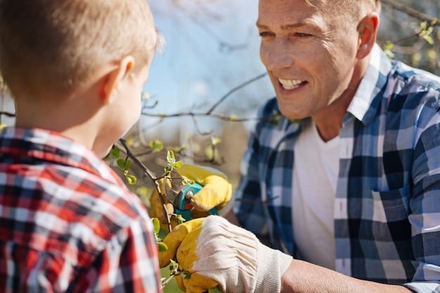 Equipe de membros da família do sexo masculino cortando os galhos da árvore junto com uma tesoura de poda em um jardim familiar