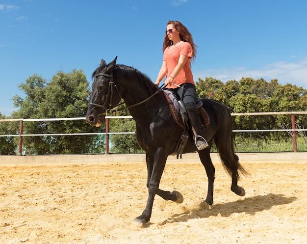 Equitação menina e garanhão