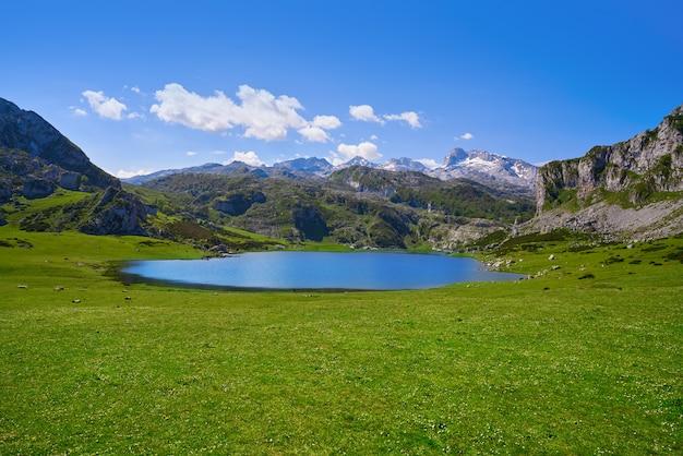 Ercina lago em picos de europa nas astúrias, espanha