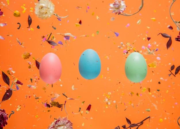 Erva bellis seca com flores e ovos de páscoa em fundo laranja isolado. sem sombras