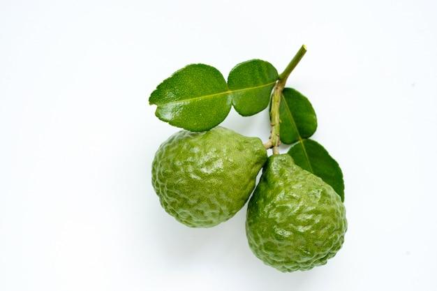 Erva tailandesa de bergamota verde fresca para spa