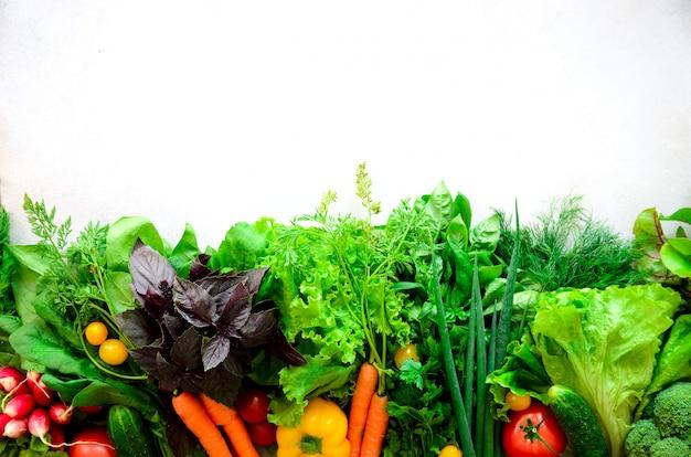 Ervas aromáticas, cebola, abacate, brócolis, pimenta sino, berinjela, repolho, rabanete, pepino, amêndoas, rucola, milho bebê.