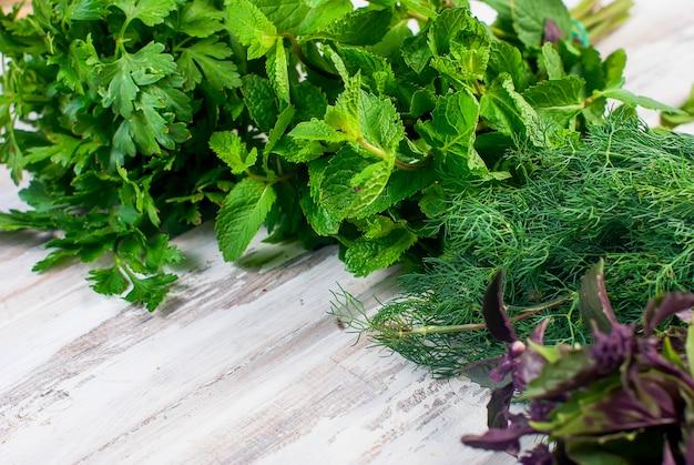 Ervas aromáticas frescas, endro, manjericão, salsa, hortelã