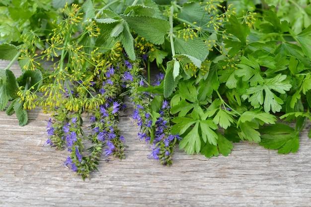 Ervas aromáticas frescas na velha de madeira