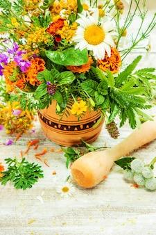 Ervas em um almofariz. plantas medicinais. foco seletivo.
