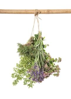 Ervas frescas. cachos de suspensão isolados no fundo branco. tomilho, orégano, manjerona, lavanda. especiarias e ingredientes alimentares