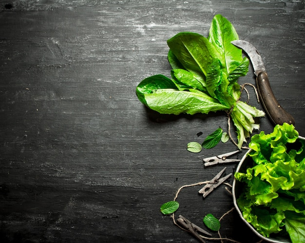 Ervas frescas com uma faca velha. na mesa de madeira preta.