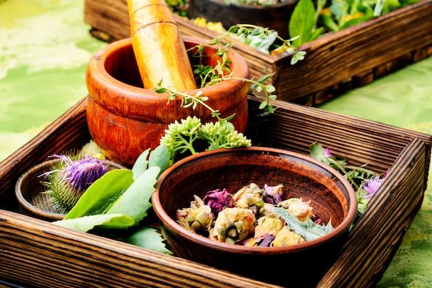 Ervas medicinais com argamassa