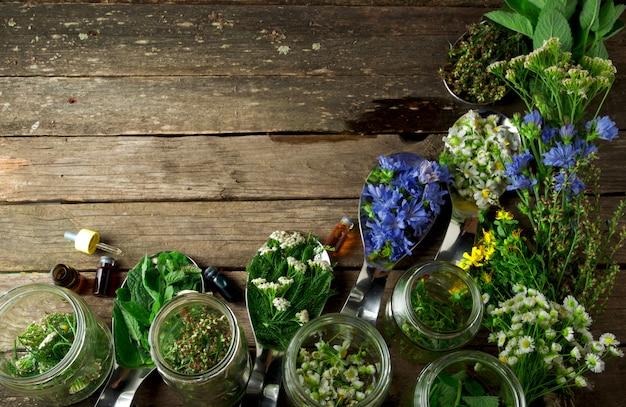 Ervas medicinais frescas.