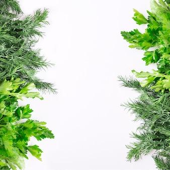 Ervas verdes sobre fundo branco