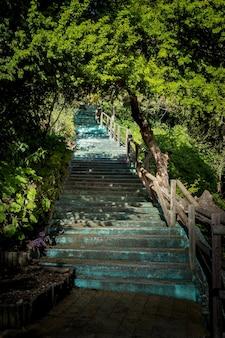 Escada azul turquesa com grades de madeira no campo