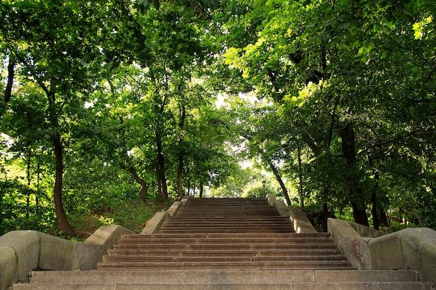 Escadas largas subindo no parque mariinsky, kiev