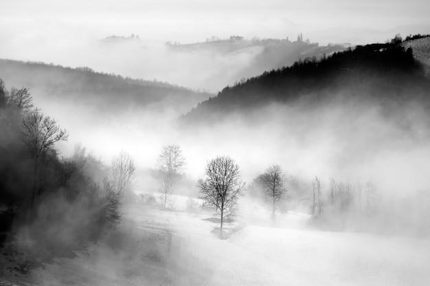 Escala de cinza de colinas cobertas por florestas e neblina sob um céu nublado em langhe, na itália