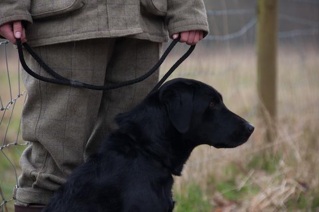 Escolher batedor preto levar canin