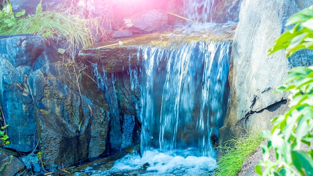Escorrega alpina com mini cascata. paisagem do parque sity com plantas verdes variadas e samambaias. cenário botânico atmosférico em dia ensolarado de verão.