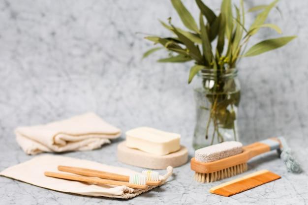 Escova de cabelo natural de vista frontal e folhas
