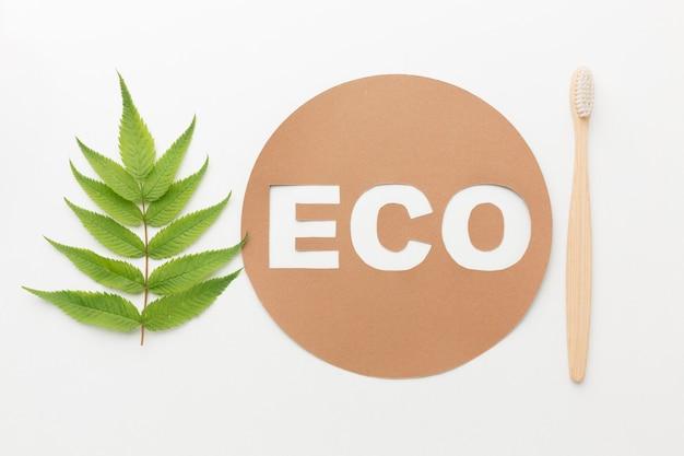 Escova de dentes ecológica