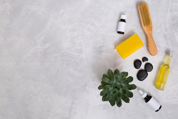 Escova de madeira; último; garrafas de óleo essencial; sabão amarelo e planta do cacto no pano de fundo concreto com espaço para escrever o texto