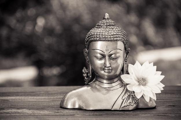 Escultura de buda chinês e flor dália branca