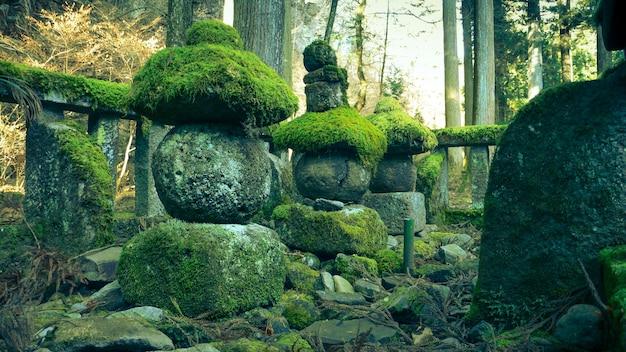 Esculturas antigas de pedra musgosa na floresta japonesa