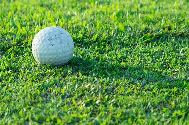 Esfera de golfe na grama no campo de golfe.