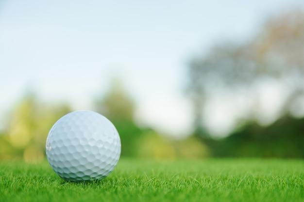 Esfera de golfe na grama verde pronta para jogar no campo de golfe.