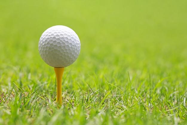Esfera de golfe no t de golfe de madeira.