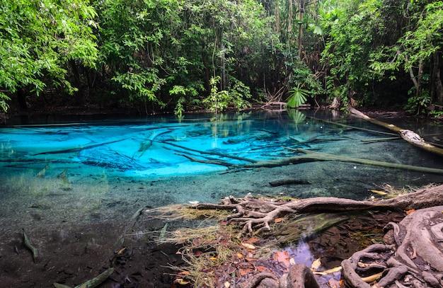 Esmeralda piscina azul (sra morakot) na província de krabi, tailândia