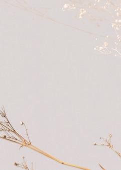 Espaço de design natural de fundo floral seco