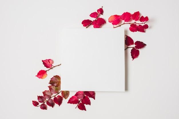 Espaço em branco da cópia com frame roxo das folhas de outono