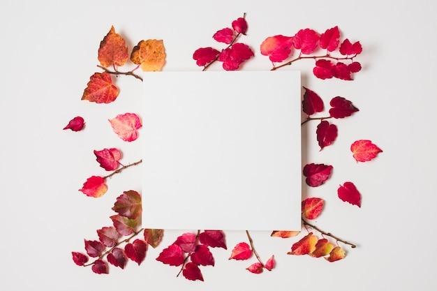 Espaço em branco da cópia com quadro colorido das folhas de outono