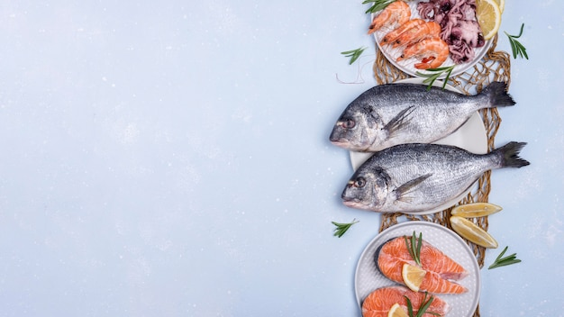 Espaço para cópia de variedade de pratos de frutos do mar