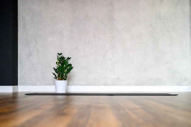 Espaço para ioga, um tapete de borracha e uma planta zamioculcas no chão de madeira contra uma parede de concreto cinza.