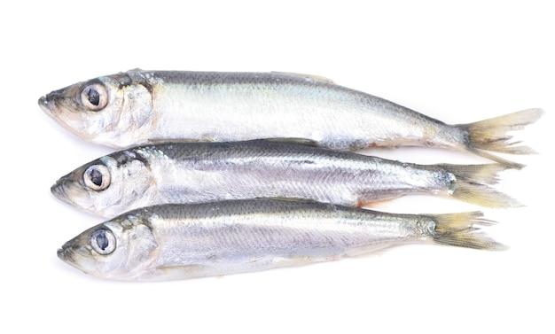 Espadilha de peixe