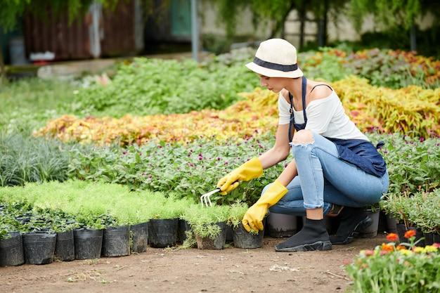 Especialista em jardinagem capinando solo em vasos
