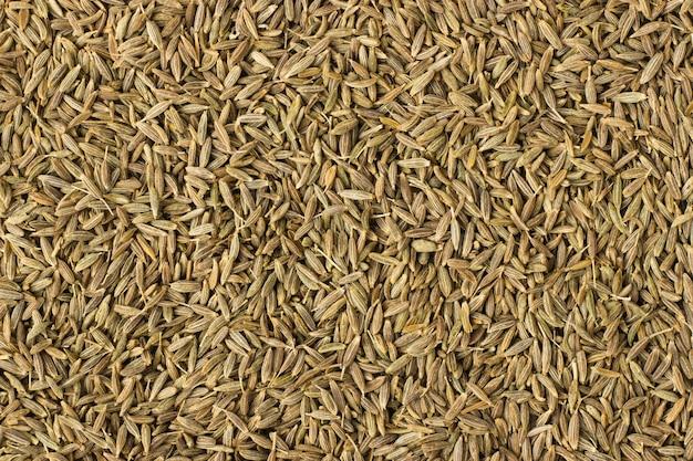 Especiaria zira como pano de fundo, textura de tempero natural