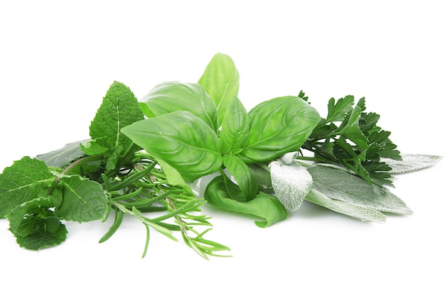 Especiarias frescas em branco