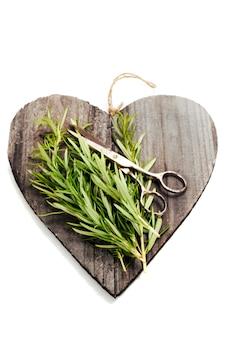 Especiarias frescas na tábua em forma de coração