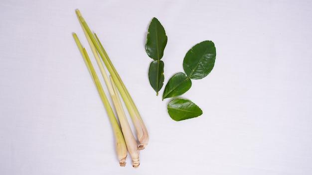 Especiarias variadas de capim-limão e folha de louro isoladas em um fundo branco