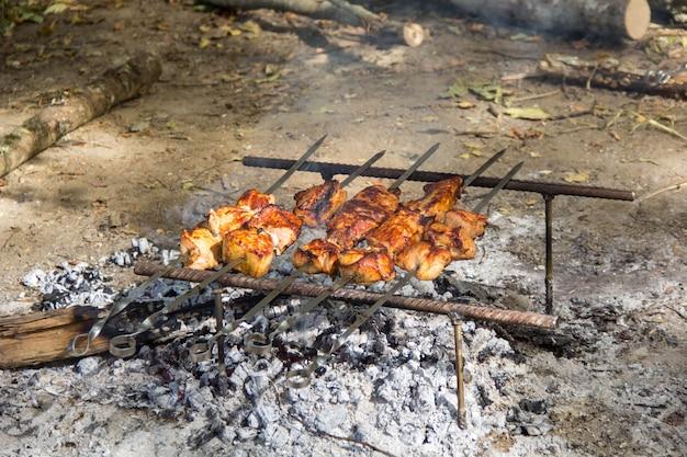 Espetadas de carne de porco espetinho shashlik churrasco no piquenique