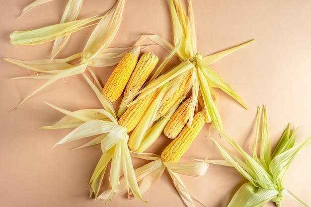 Espigas de milho amarelas maduras com folhas