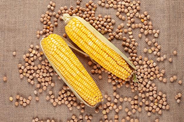 Espigas de milho frescas e doces com feijão em um saco