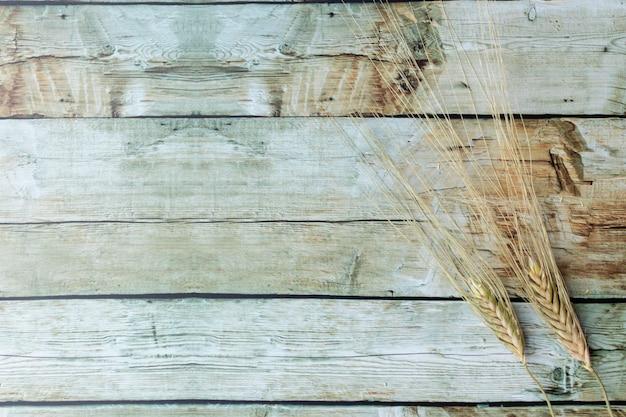 Espigas de trigo, colocadas no fundo de madeira marrom