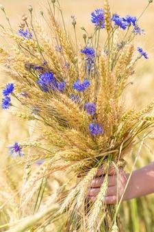 Espigas de trigo com flores na mão no fundo do campo