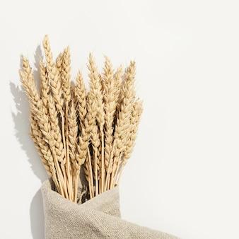 Espigas de trigo douradas maduras fecham-se amadurecendo as orelhas da planta de cereal no saco
