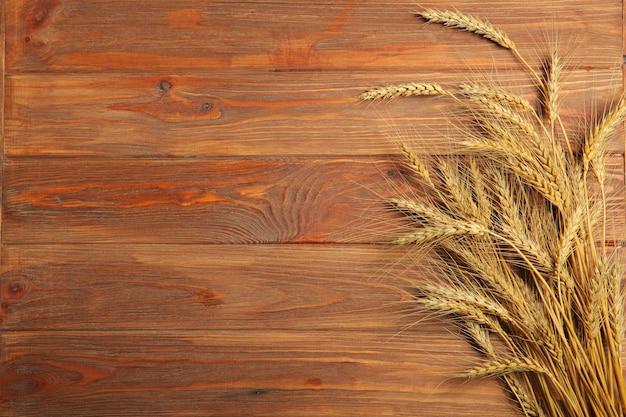 Espigas de trigo e grãos em um fundo escuro